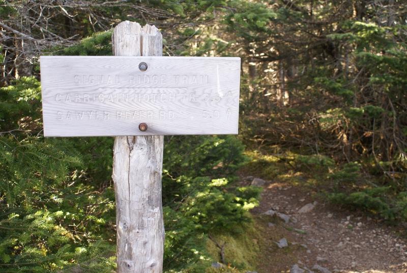 Signal Ridge Trail - 5 Miles Down