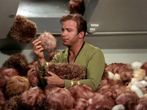 500px-Kirk_surrounded_by_Tribbles