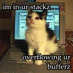 im-in-ur-stackz-overflowing-ur-bufferz